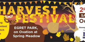 Michael Mei - Stonegate Community Harvest Festival Banner - Neo Design Concepts Graphic Design