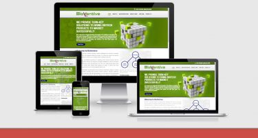 Neo Design Concepts responsive-website-design-bioventive
